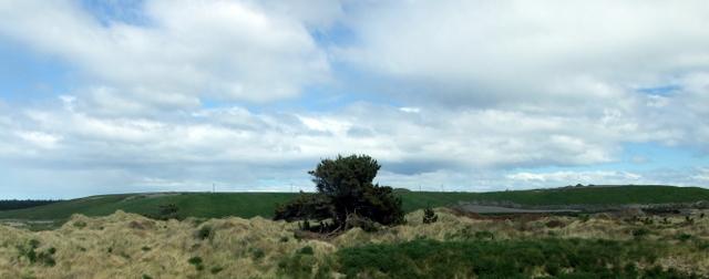 Rubbish Hill