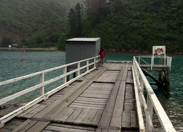 Wharf at Torea Bay