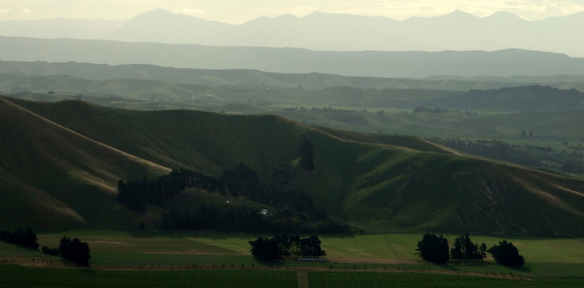 Wairau Valley from Wither Hills