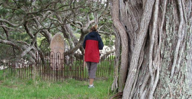 Te Muri Beach Cemetery - Mahurangi Regional Park
