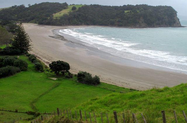 Te Muri Beach - Mahurangi Regional Park