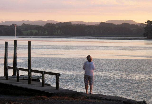 Waiau Beach - Manukau Harbour