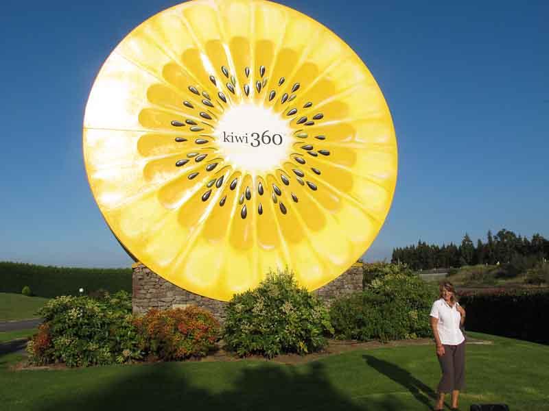 Wyn Kiwi 360 sign
