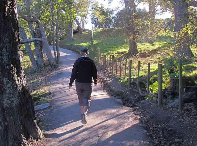 Wyn walking around the Mount