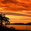 Sunrise from Port Chalmers