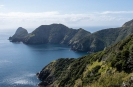 Cape Brett from the track