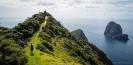 Track to Cape Brett along the ridge crest