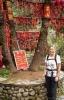 Player ribbon shrine Mt Cangshan Dali