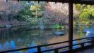 Japanese Garden of Contemplation - Hamilton Gardens