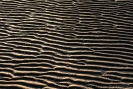Snells Beach patterns