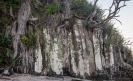 Basalt columns on the shoreline on the Mangawhai Cliff Top Walkway