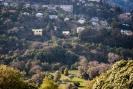 Lower Dalmore across Woodhaugh Gardens, Dunedin