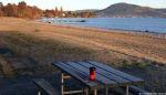 Lake Rotorua Mt Ngongataha